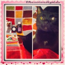 mozzer-loves-vegan-cuts-caturday-032914-thefoodduo